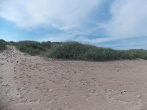 Sand Dunes on Beadnell Bay