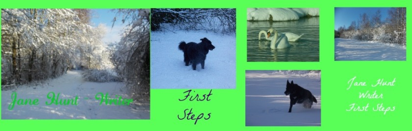 JaneHunt Writer First Steps Blog Header