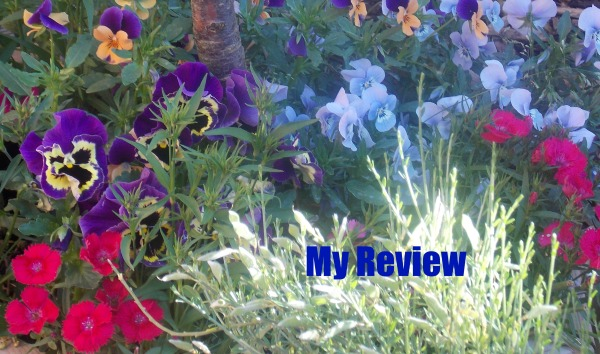 Flowers - My Review